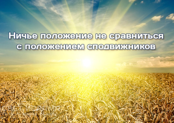 niche-polozhenie-ne-sravnitsya-s-polozheniem-spodvizhnikov