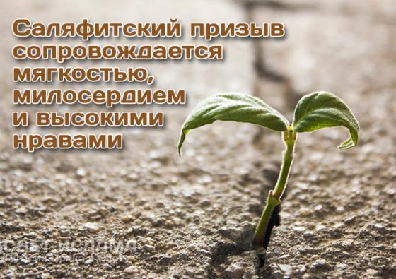 salyafitskij-prizyv-soprovozhdaetsya-myagkostyu-miloserdiem-i-vysokimi-nravami