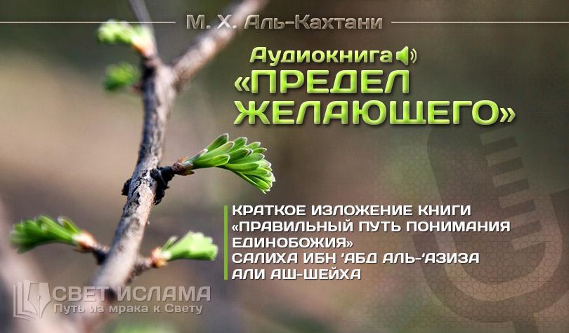 audiokniga-predel-jelayushhego