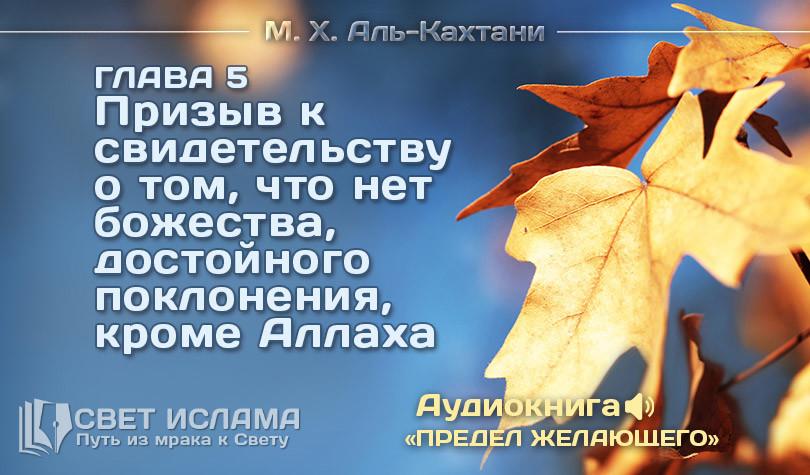 audiokniga-predel-zhelayushhego-glava-5-prizyv-k-svidetelstvu-o-tom-chto-net-bozhestva-dostojnogo-pokloneniya-krome-allaxa