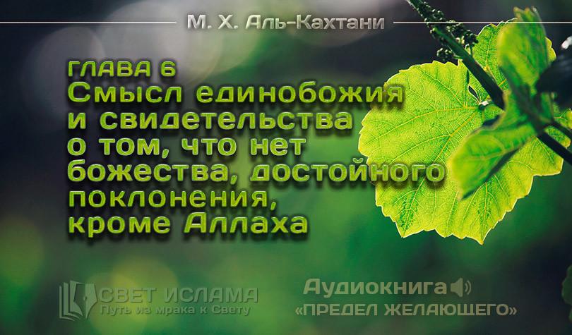 audiokniga-predel-zhelayushhego-glava-6-smysl-edinobozhiya-i-svidetelstva-o-tom-chto-net-bozhestva-dostojnogo-pokloneniya-krome-allaxa