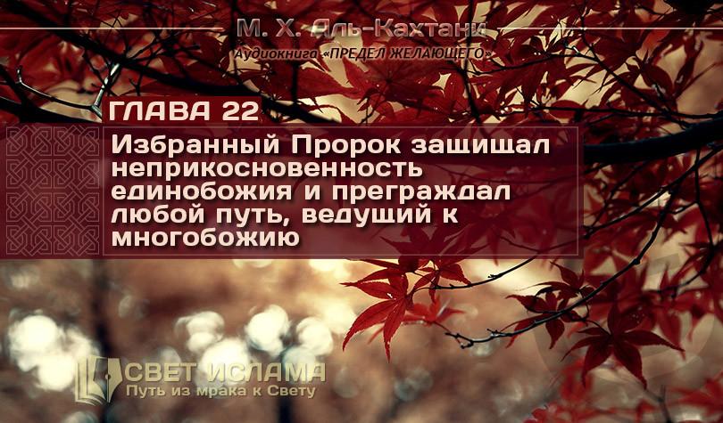 audiokniga-predel-zhelayushhego-glava-22