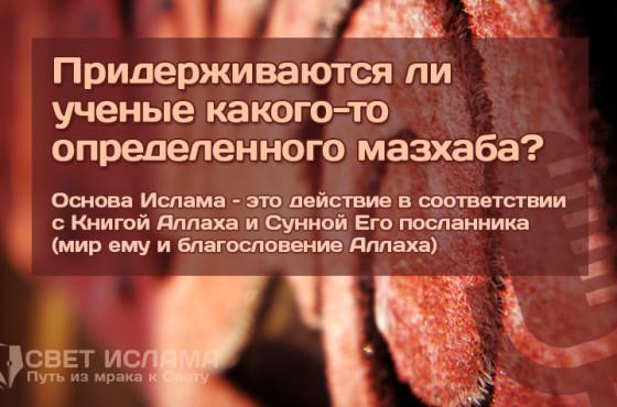 priderzhivayutsya-li-uchenye-kakogo-to-opredelennogo-mazxaba